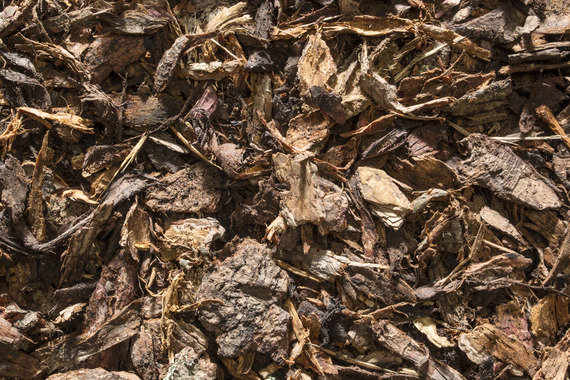 Decorative Bark Mulch