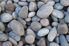 View the Scottish Beach Pebbles (30-50mm) online at Scotbark UK