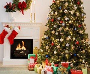 christmas holidays Thumbnail