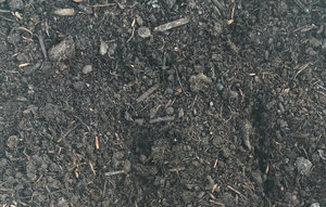 More views of Organic Peat-Free Compost